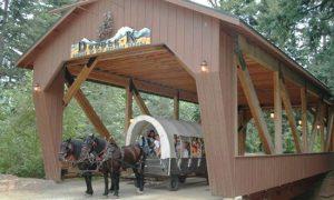 Double K Retreat and Adventure Center