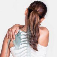 Lakewood Natural Medicine and Chiropractic
